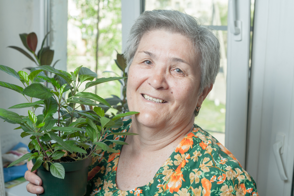recreation therapy for seniors indoor gardening