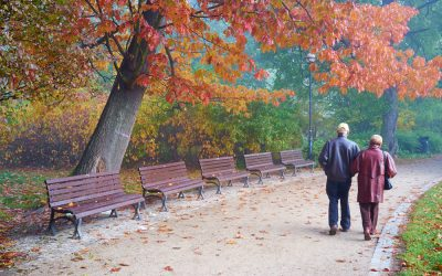 9 Benefits of a Trip to the Park for Seniors