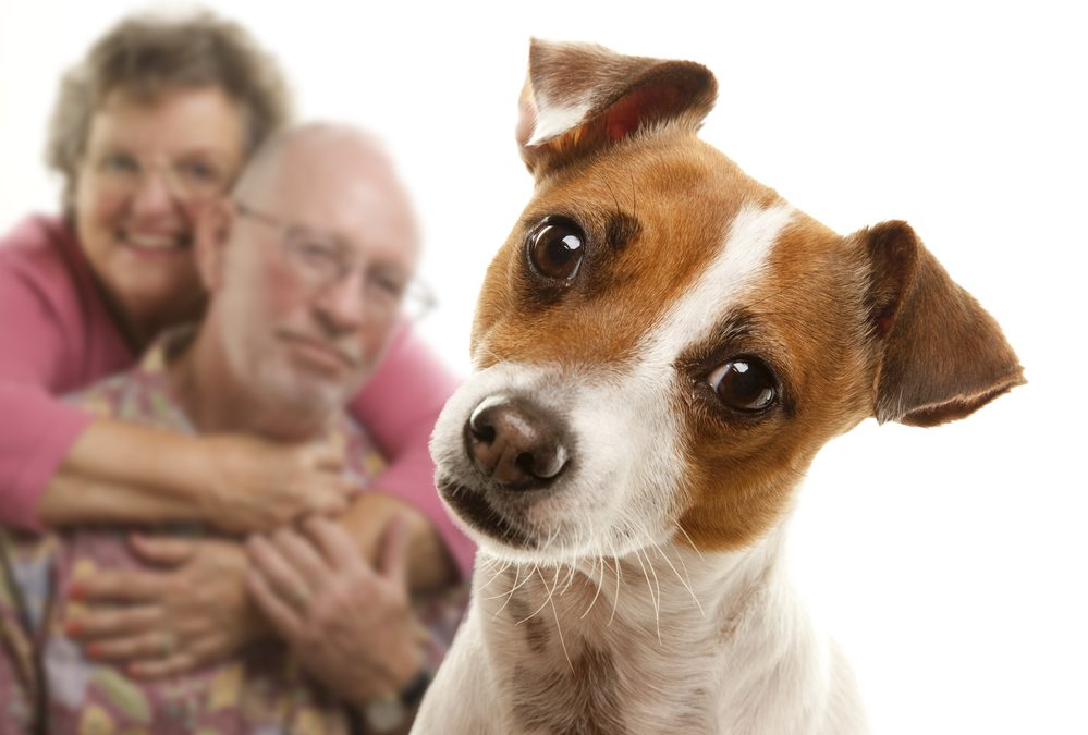 Pet Therapy for Seniors, Unlimited Care Cottages, Kingwood, Oak Ridge North, Spring, The Woodlands, TX
