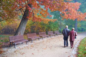 Trip to the Park for Seniors, Unlimited Care Cottages, Kingwood, Spring, Oak Ridge North, The Woodlands, TX