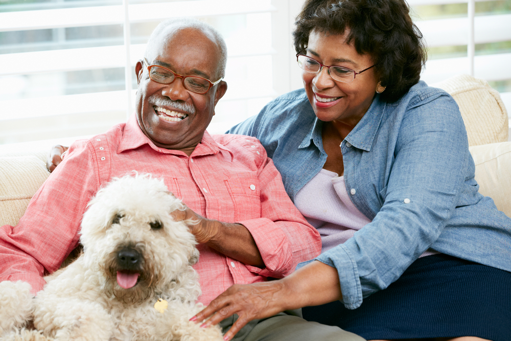 Pet Therapy for Seniors, Unlimited Care Cottages, Spring, TX